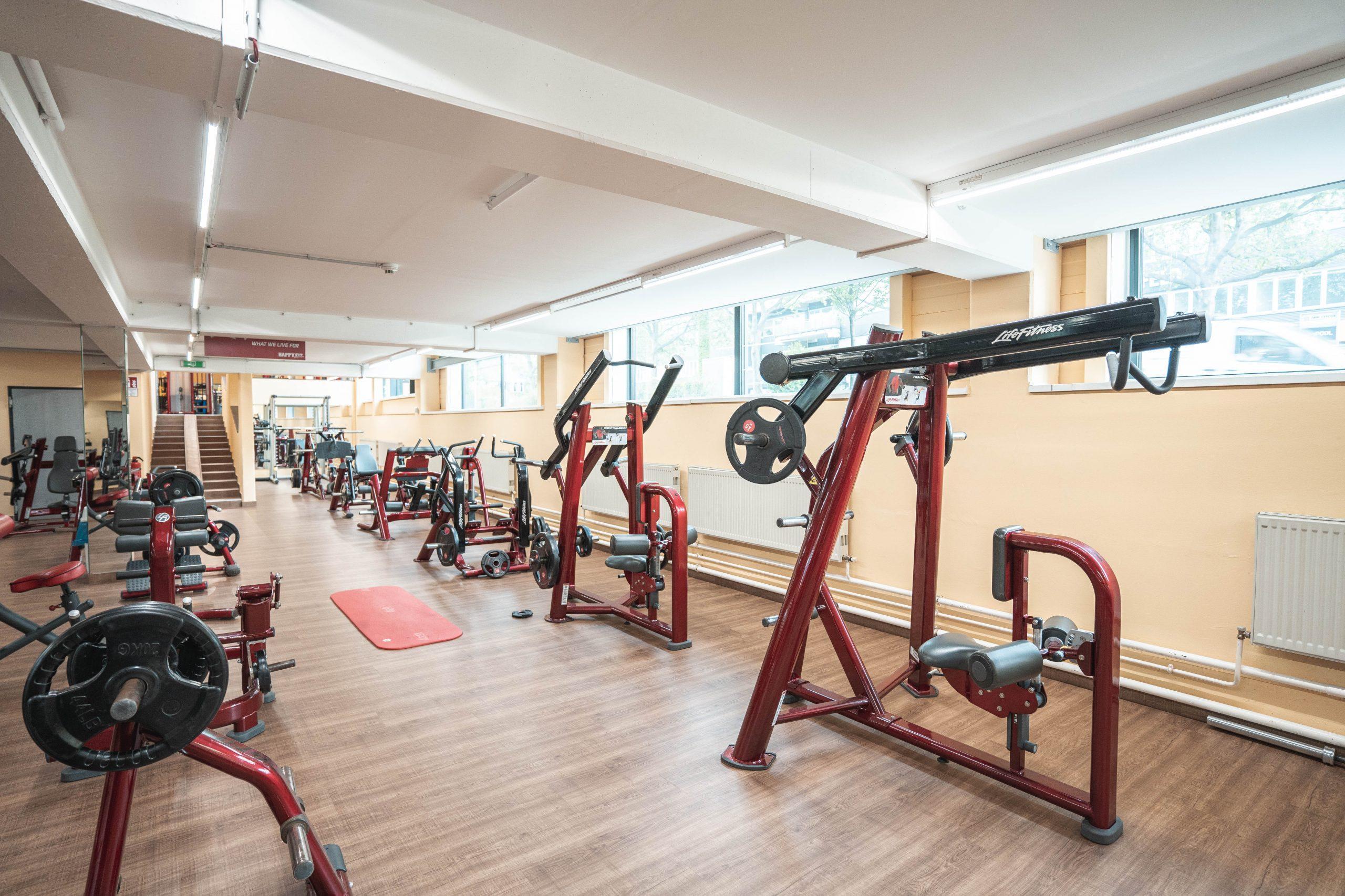 Free Weight Bereich mit Life Fitness-Geräte (Zwischenstock)
